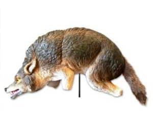 3dcoyote