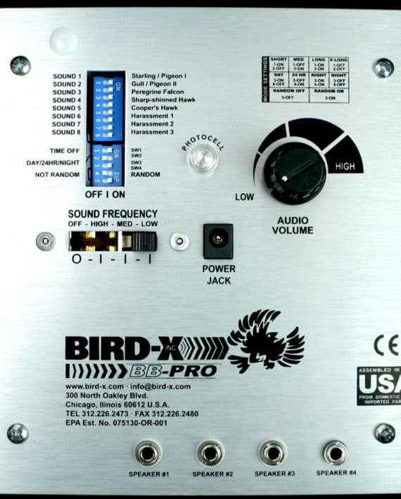 BBP2_900x900_bird-xdotcom-RESTRICTED-USE (1)