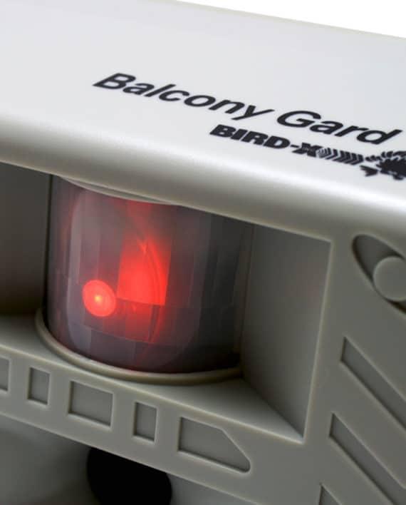 BG3_900x900_bird-xdotcom-RESTRICTED-USE