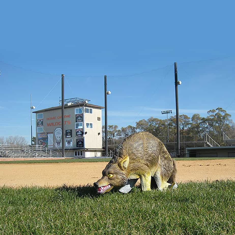 COYOTE-3D application pic baseball field