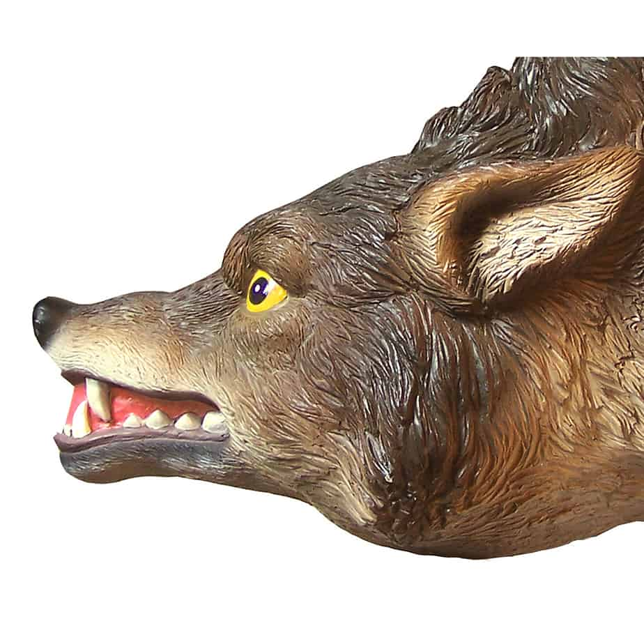 COYOTE-3D close up face