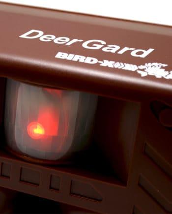Deer Gard Bird X