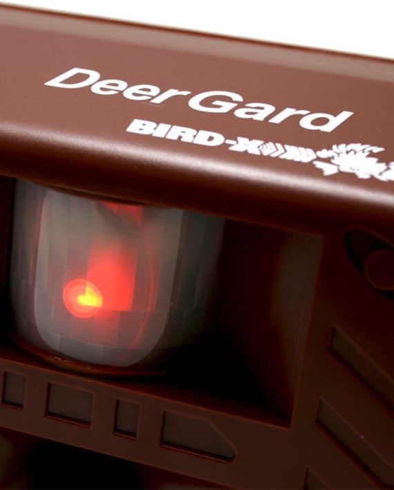 DG3_900x900_bird-xdotcom-RESTRICTED-USE