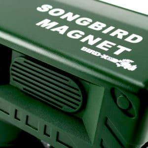 SBM2_900x900_bird-xdotcom-RESTRICTED-USE