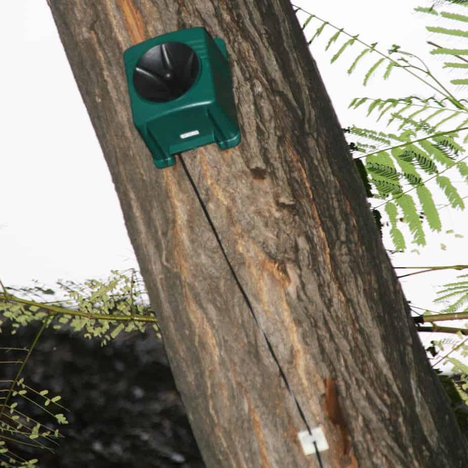 SBXP-PRO speaker on tree