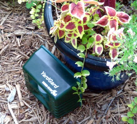 Yard Gard Ultrasonic Bird Repeller in garden by potted plant