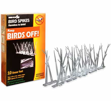 Bird Spike Kit